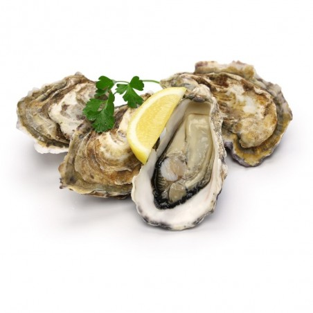 Oysters from the Ría de...
